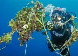 limpieza-fondo-marino (1)